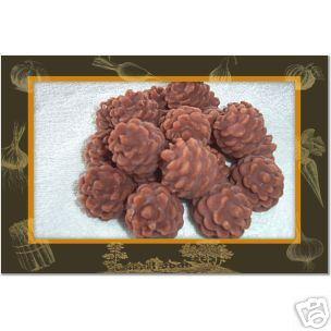 15 Pinecones